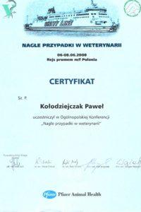 http://lancet.home.pl/Lancet/wp-content/uploads/2018/12/2008.06.06-08-200x300.jpg