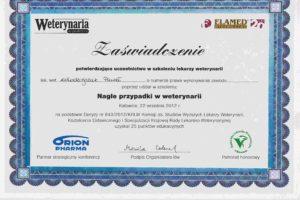 http://lancet.home.pl/Lancet/wp-content/uploads/2018/12/2012.09.22-300x200.jpg