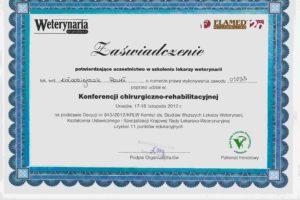 http://lancet.home.pl/Lancet/wp-content/uploads/2018/12/2012.11.17-18-300x200.jpg