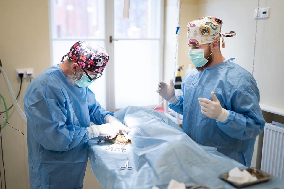 http://lancet.home.pl/Lancet/wp-content/uploads/2019/01/operacja-960x639.jpg